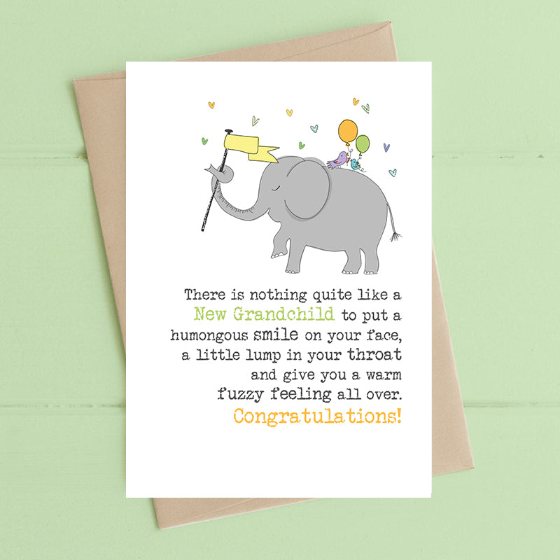 Dandelion Stationery - New Grandchild Fuzzy Feeling Blank Card
