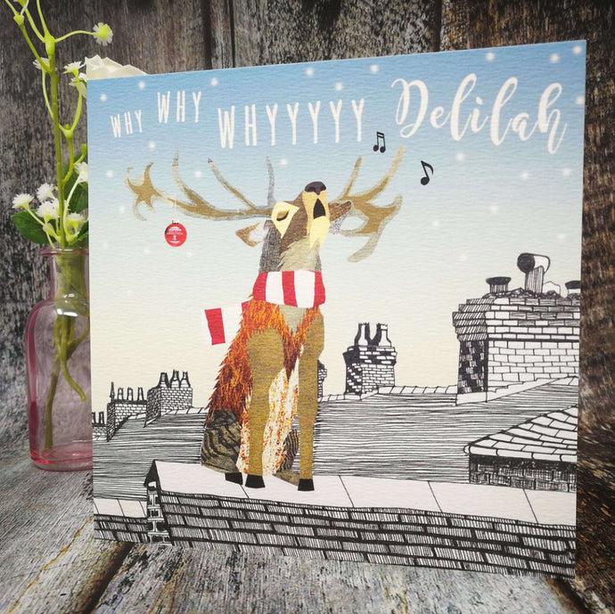 Flying Teaspoon Why Why Why Delilah Stoke City Christmas Card