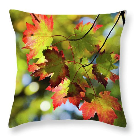 Autumn Leaves - Throw Pillow