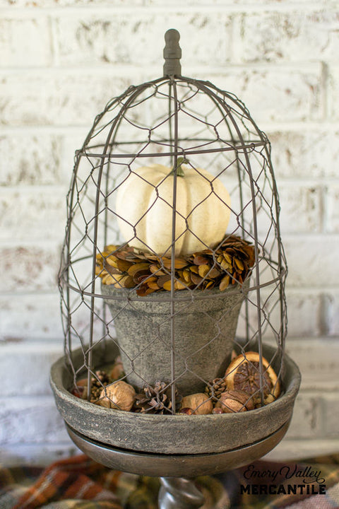 terra cotta planter with chicken wire cloche