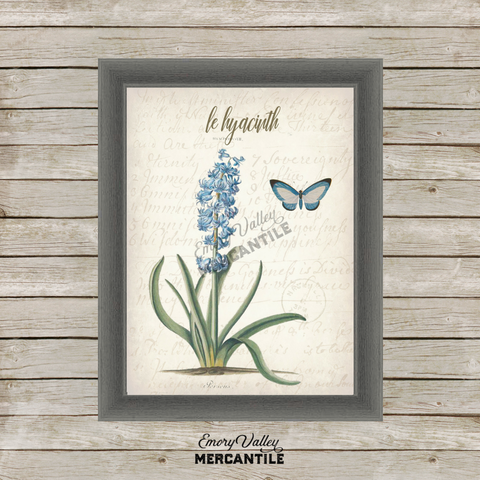 vintage hyacinth botanical printable