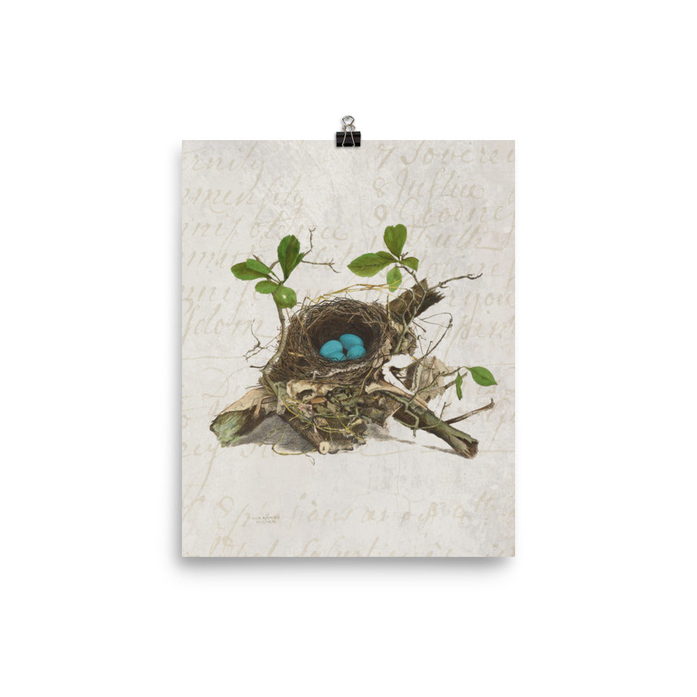 Antique Bird Nest Print