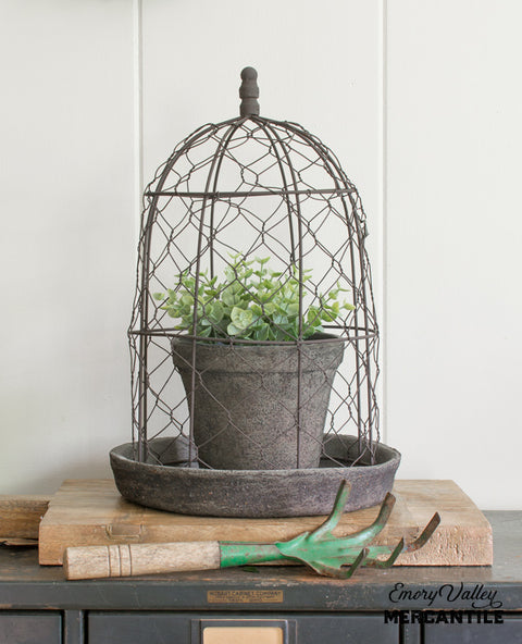 planter with wire cloche