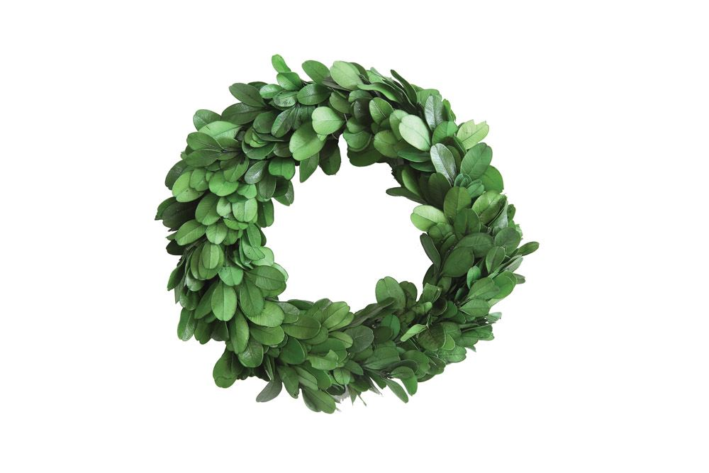 preserved boxwood wreath 8""