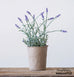 faux lavender plant in pot