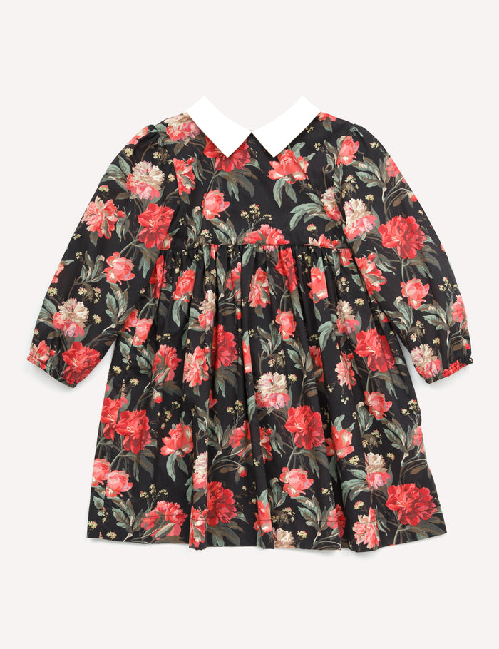 Clara Pointy Collar Dress - Red Floral