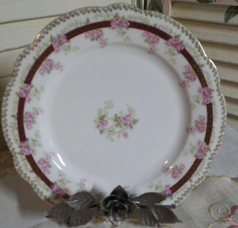 Cabinet Plate - Imperial China -  Austrian Porcelain - Excellent Condition