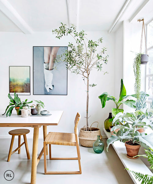Naturalist way to dress up your home - KNUS
