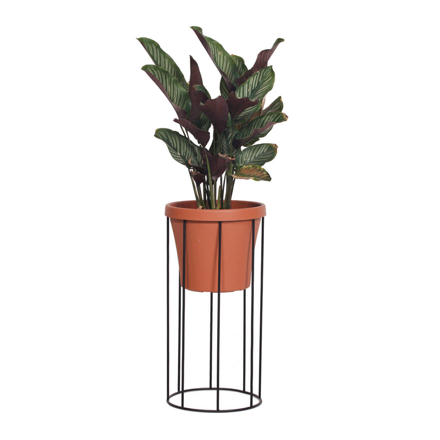 Medium Column Pot Plant Stand - KNUS