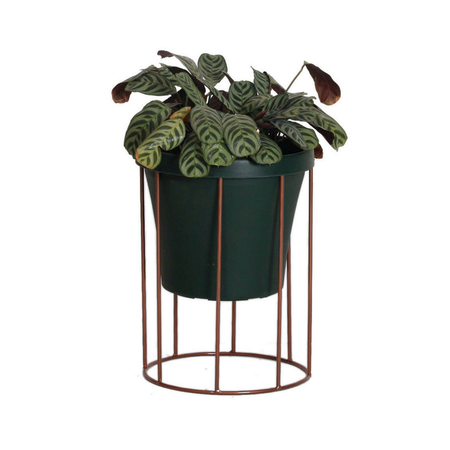 Short Column Pot Plant Stand - KNUS