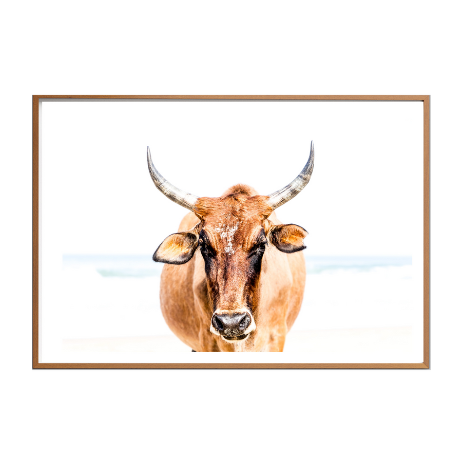 Nguni Light Tan II Art Print - KNUS