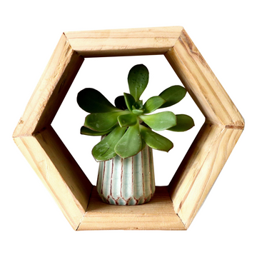 Wooden Hexagonal Wall Shelf - Small - KNUS