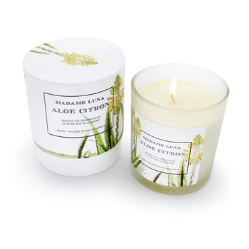 Succulent Aloe Citron Glass Candle - KNUS