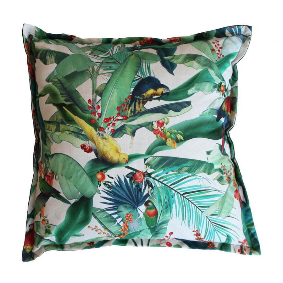 Macaw Prime Scatter Cushion - KNUS
