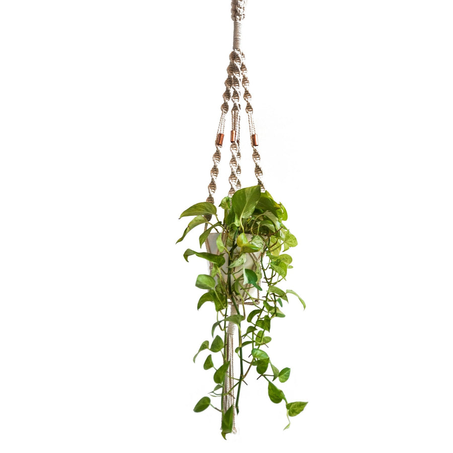 Copper Twister Space Macrame Plant Hanger