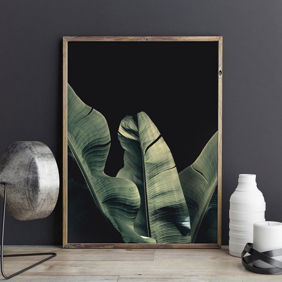 Banana Leaf Black Background Art Print