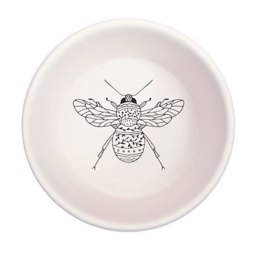 Insect Tapas Bowl - KNUS