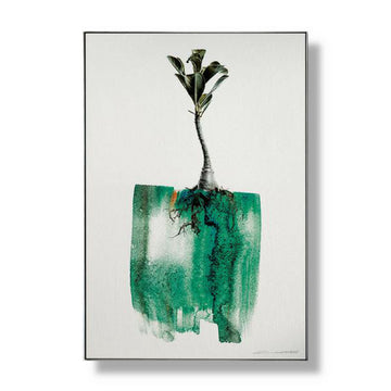 Limited Edition Adenium Art - KNUS
