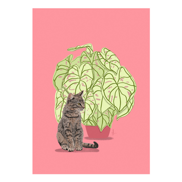 Cat & Caladium Art Print - KNUS