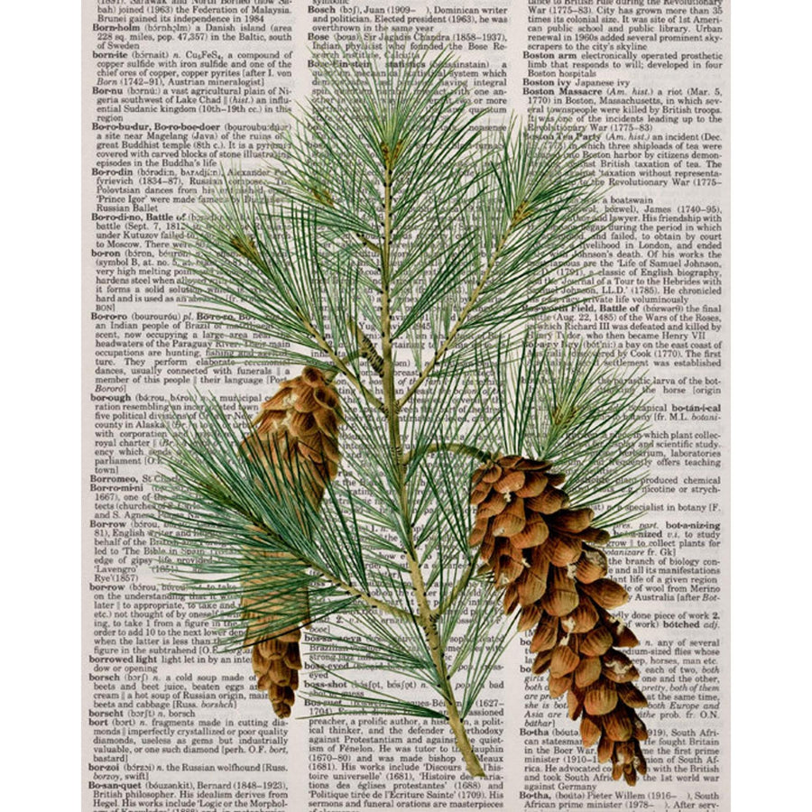 Newspaper Pine Cone Art Print - KNUS