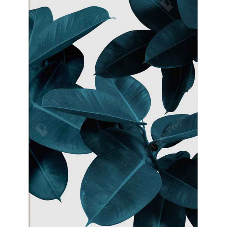 Teal Leaf Set Art Print - KNUS