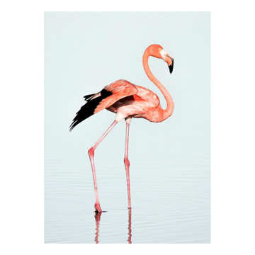 Flamingo Pink & Blue Art Print - KNUS