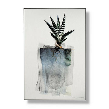 Limited Edition Aloe Art - KNUS