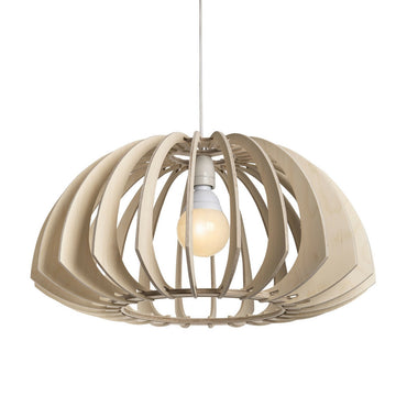 Cusp Pendant Light