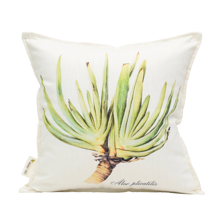 Aloe Plicatilis Scatter Cushion - KNUS
