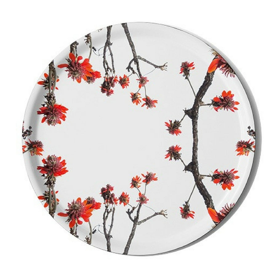 Erythrina Latissima Serving Tray - KNUS