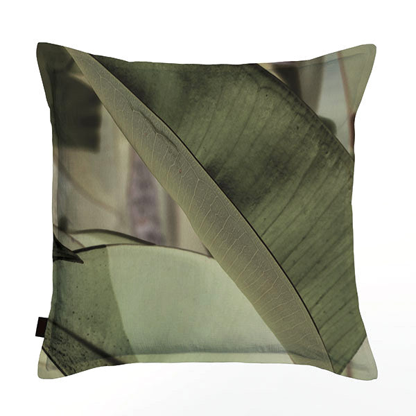 Ficus Foliage Scatter Cushion DBL sided print