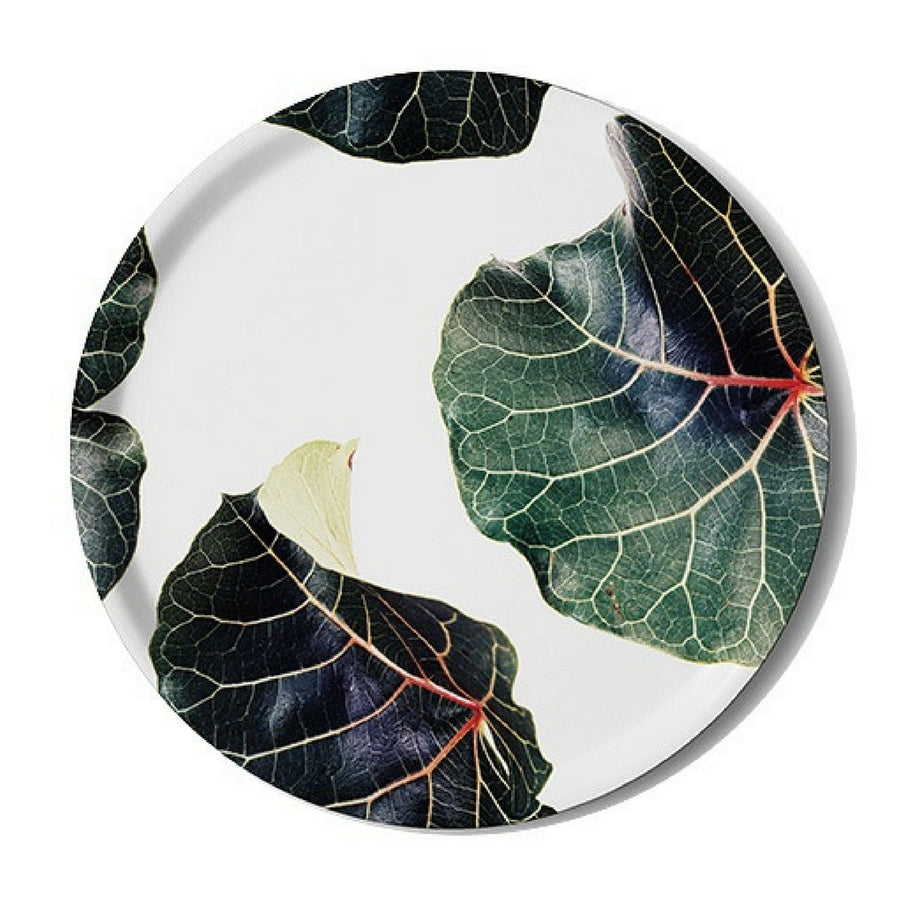 Ficus Abutifolia Serving Tray - KNUS