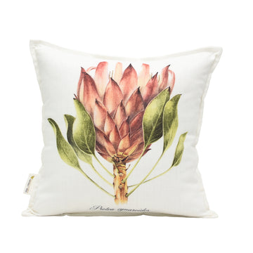 Protea Cynaroids Front Scatter Cushion - KNUS