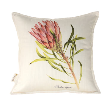 Protea Repens Red Scatter Cushion - KNUS