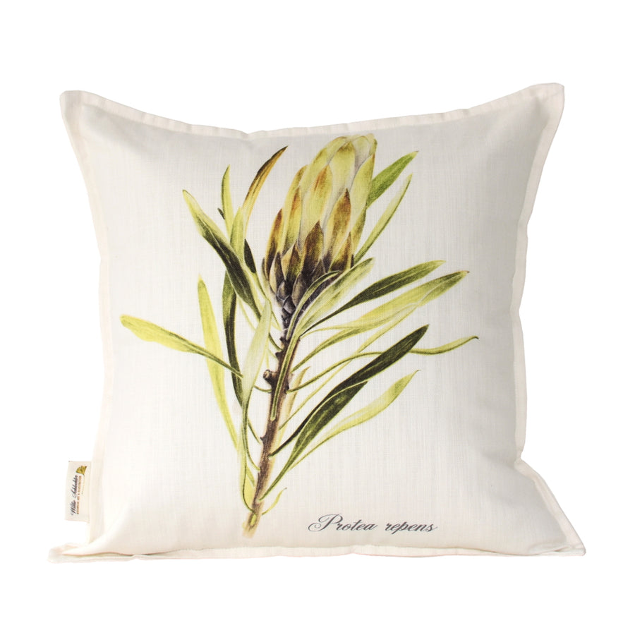 Protea Repens White Scatter Cushion - KNUS