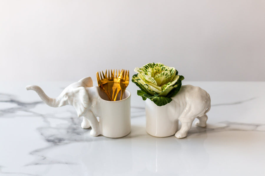 Recki Utensil Holder