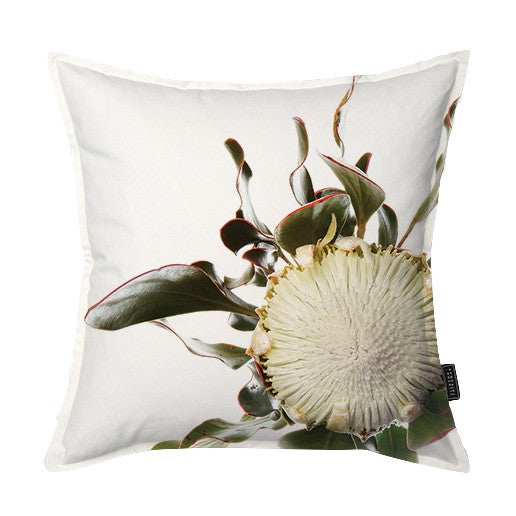 Fynbos Protea Scatter Cushion