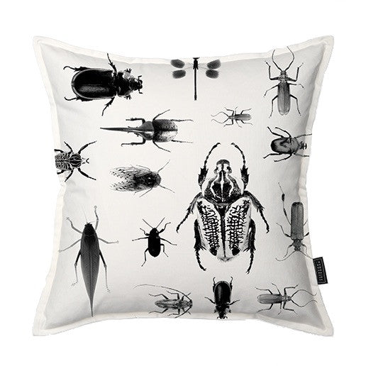 African Insect Collection Scatter Cushion