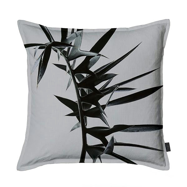 Silver Cycad Scatter Cushion DBL sided print