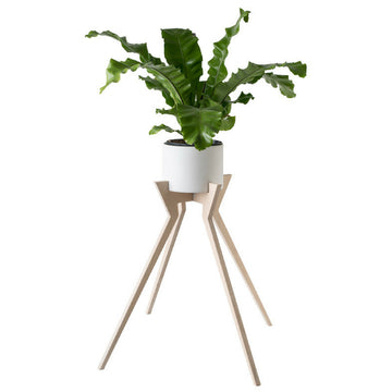 Xeno Pot Plant Holder - KNUS