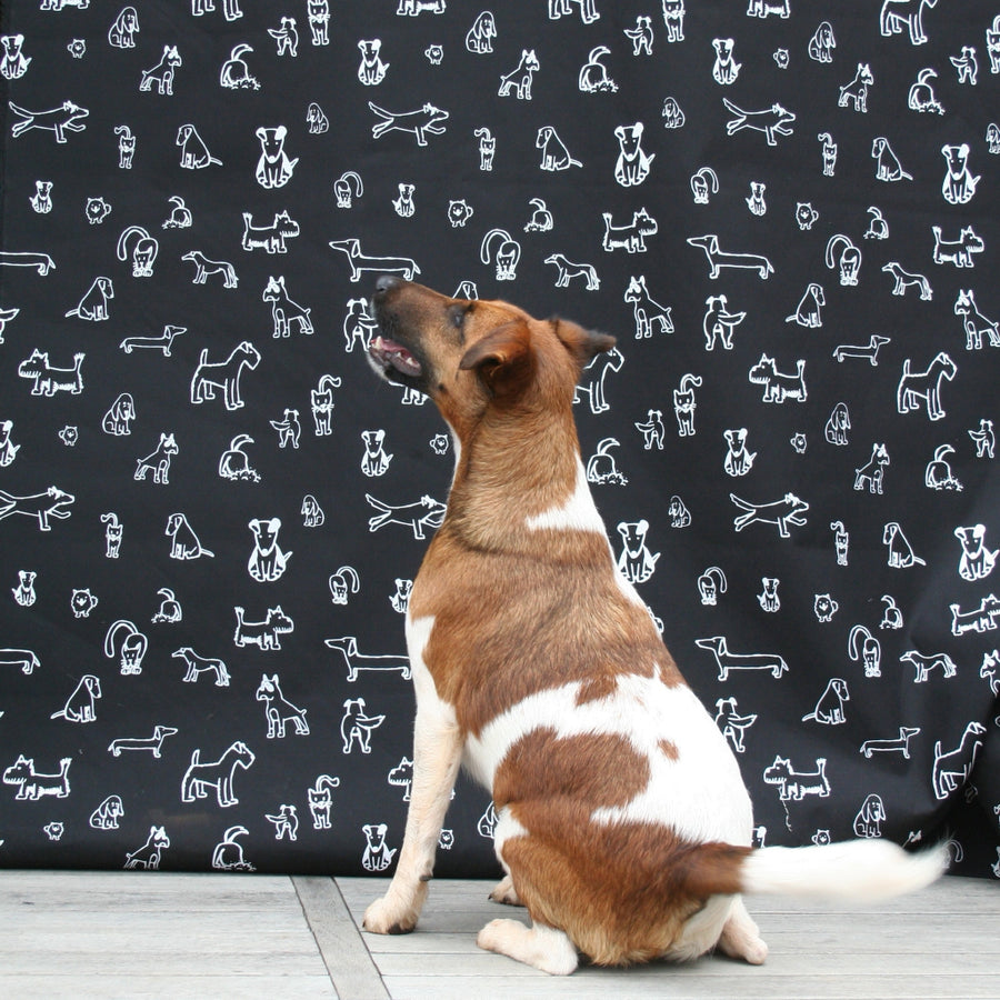 Black Dog Doodles Fabric (Per Meter)