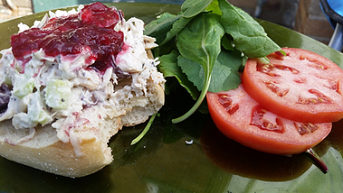 Open Face Cranberry Curry Turkey Salad Sandwich