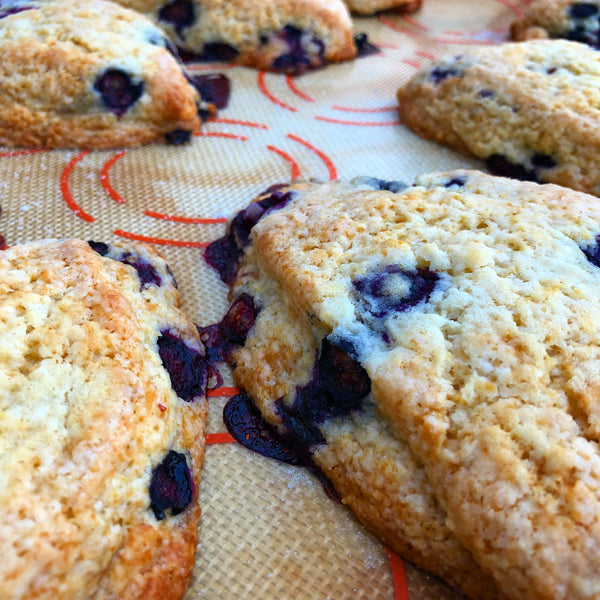 Rum Blueberry Eggnog Scones