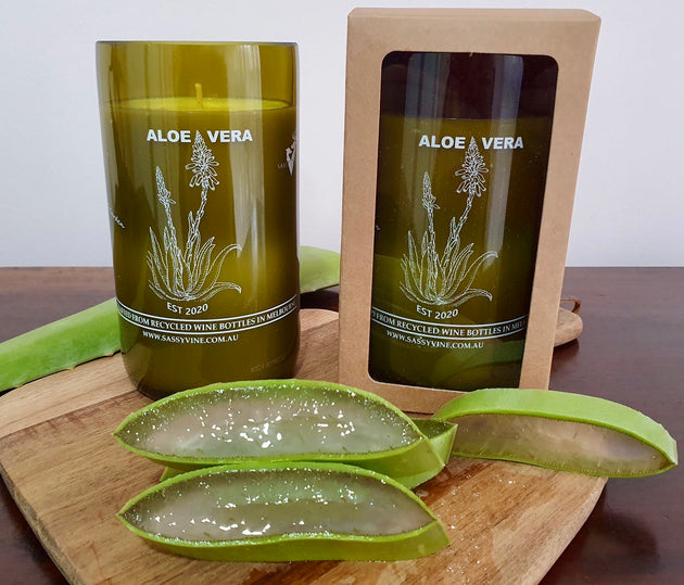 Aloe Vera Reclaimed Wine Bottle Candles