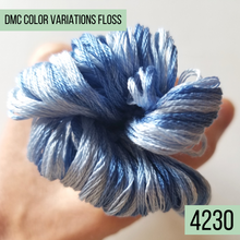 DMC Color Variations Floss