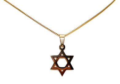 Star of David Stainless Steel Pendant with 18 inch Box - Davids Star Necklace