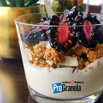ProGranola® 12g Protein Cereal Vanilla Cinn (Paleo : Low Net Carb : Gluten and Grain Free) (15 Servings)-Gains Everyday