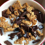 gains-everyday,ProGranola® 12g Protein : Peanut Butter Cluster : (Low Net Carb : Gluten-Free : Grain-Free) (14 Servings),Julian Bakery,Protein Cereal
