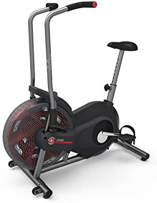 Schwinn Airdyne Stationary Air Bike-Gains Everyday