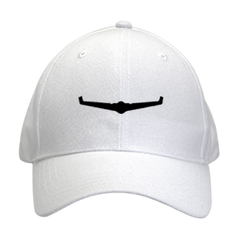 Fixed Wing Drone Hat